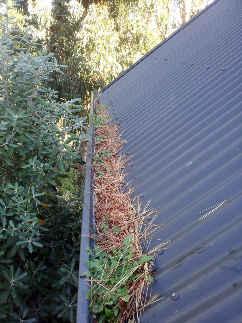 Corrugated Roof Gutter Guard Installers. Corrugated Roof Gutter Guard installers Christchurch Canterbury and Otago.